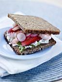 Schwarzbrot-Sandwich mit Garnelen, Radieschen und Erdbeeren