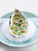 Auster auf Gurkennage mit Basilikum und Croutons
