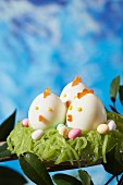Küken aus hartgekochten Eiern mit Salzbutterkaramell auf Kiwi-Nest