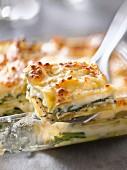 Vegetable and bechamel lasagnes