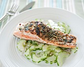 Piece of salmon coated with herbs,cucumber with shallots