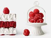 Raspberry Vacherin and fresh raspberries under a glass dome