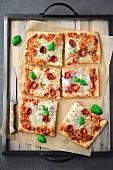 Pizza mit Kirschtomaten und Basilikum