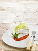 Bass fillets wrapped in lettuce leaves on a bed of homemade ketchup
