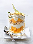 Oat flake, fromage blanc,mango and lime blossom trifle