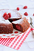 Soft raspberry and chocolate cake