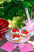 Erdbeer-Sahne-Törtchen