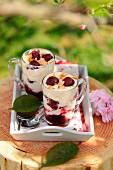 Creamy sour griotte cherry verrines