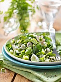 Fresh broad bean,herb and feta salad