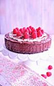 Schokoladen-Himbeer-Kuchen