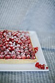 Raspberry and gluten-free almond-coco confectioner's custard tart