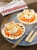 Grantinated scallops with Bechamel sauce and prawns