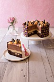 Chocolate and hazelnut cake with chocolate drops