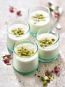 Mouhalabieh (Vanillecreme mit Orangenblütenwasser und Pistazien, Libanon)