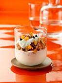 Plain yoghurt with homemade granola