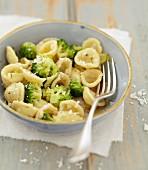 Orecchiette with broccolis