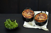 Two dishes of lasagnes