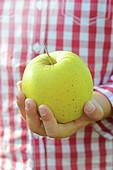 Kind hält einen Apfel der Sorte Golden Delicious
