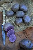 Blaue Kartoffeln der Sorte Vitelotte