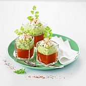 Tomato gazpacho, cucumber puree with cream, fromage frais crumb and paprika Verrines