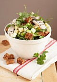 Chicken and diced cheese salad with croutons