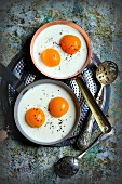 Fried egg shape panna cotta with apricot halves