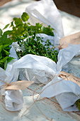 Assortment of fresh herbs with labels