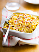Shell pasta, ham and Emmental gratin