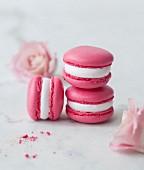 Rose water Macarons