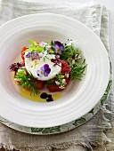 Tomato and mozzarella salad with edible flowers