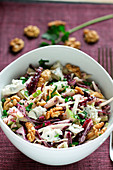 Red cabbage, fennel, apple, gorgonzola and walnut salad