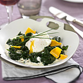 Spinach in creamy sauce, poached egg and mimolette flakes