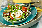 Anchovy mixed salad with a poached egg