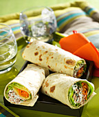 Tuna,Comté and raw vegetable tortillas