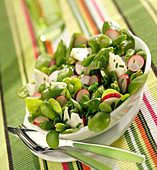Purslane, broad bean, radish and goat's cheese salad