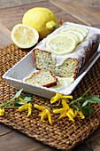 Zitronen-Mohn-Kastenkuchen