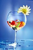 Cocktail mit Côtes de Bergerac-Weisswein, Ingwerbier und frischen Früchten