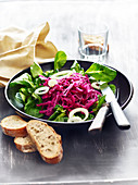 Red cabbage,corn lettuce and linseed salad