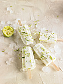 Coconut And Lime Ice Cream Bars