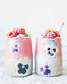 Chia seeds in coconut milk and Raspberry-pitahaya ice cream smoothie