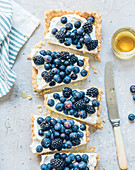 Cream cheese,blueberry,blackberry and honey rectangular tart