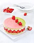 Fraisier (Erdbeer-Sahne-Torte, Frankreich), laktosefrei und ohne Butter