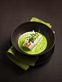Brill fillet with Citrino by Guy Lassaussaie