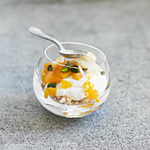 Ricotta mousse with apricots and pistachios
