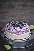 Lime and blueberry cheesecake