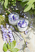 Panna cotta with wisteria flowers