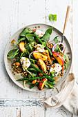 Spinatsalat mit Linsen, grünen Bohnen, Nektarinen und Mozzarella