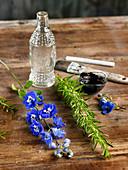 Bastelmaterial: Blütenzweige, Kräuterzweige, Glasflasche und Farbe