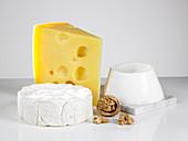 Stilleben mit verschiedenen Käsesorten