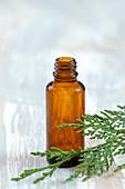 Ätherisches Öl im Fläschchen